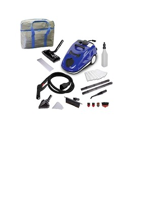 APX 390 Steam Cleaner